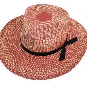 Sombrero Americano de colores